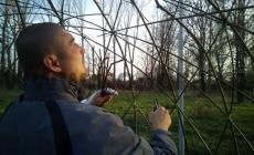 vrbove-stavby-7_result