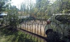 vrbickovy-plot