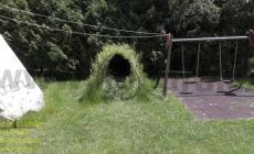 vrbove-stavby-lany
