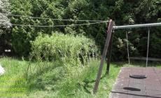 vrbovy-tunel-lany-kondra-cz-02